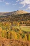 autumn tints, lyon, scotland, u-shaped, valley, glen, birch, scots pine, vibrant, colours, yellow, orange, perthshire