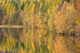 pitlochry, picturesque, woodland, water, autumn, colours, perthshire, scotland