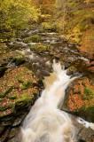 urlar, burn, stream, autumn, falls, birks of aberfeldy, robert burns, perhtshire, scotland, flass of moness, poet