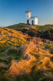 elie, lighthouse, david stevenson, tower, creulated, fife, elie ness, sunset