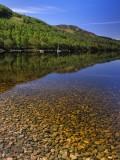 spring, reflection, reflections, hillside, loch, rannoch, perthshire, scotland, stones