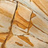 dysart, sandstone, rocks, striations, cat, fife, coast, colourful