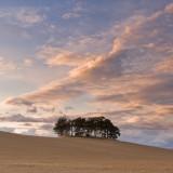 harmony, brechin, angus, scotland, beautiful landscape, photograph, simple, peacefulness, image, composition