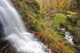 woodland, streams, hillside, autumn, waterfalls, scale, landscape, photo