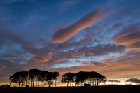 angus, scotland, sunset, spectacular, colours, clouds, warm, lenticular clouds, clouds, blue
