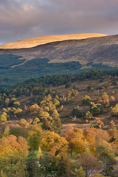 hill, glen, lyon, perthshire, scotland, autumnal, hillside, evening light, photo