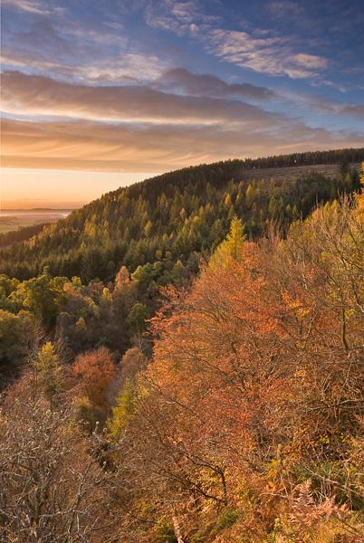 first light, sun, autumn, tree, clouds, dunkeld, perthshire, scotland, photo