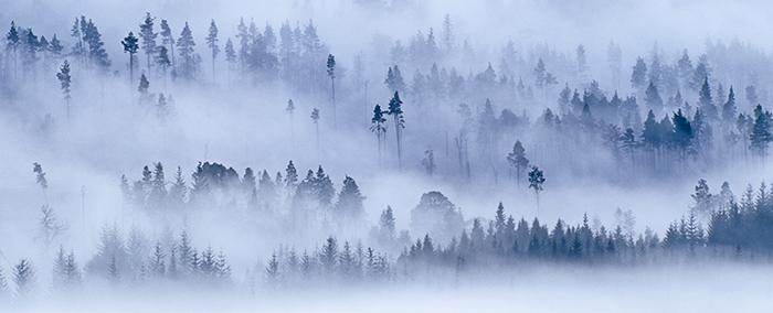 highland, photo