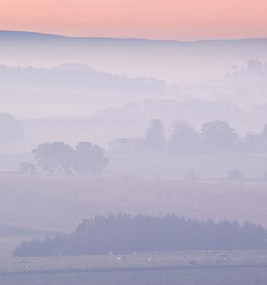 misty, dawn, hill of tarvit, early morning, mist, undulating, farm landscape, layers, fife, scotland, photo