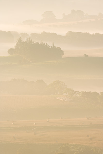misty, farm landscape, autumn, harvest, mist, beautiful, countryside scenery, warm light, image, photo