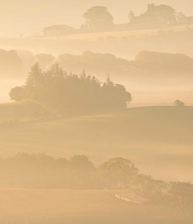 misty, farm landscape, layers, zig-zag, composition, hill of tarvit, fife, scotland, telephoto, lens, photo
