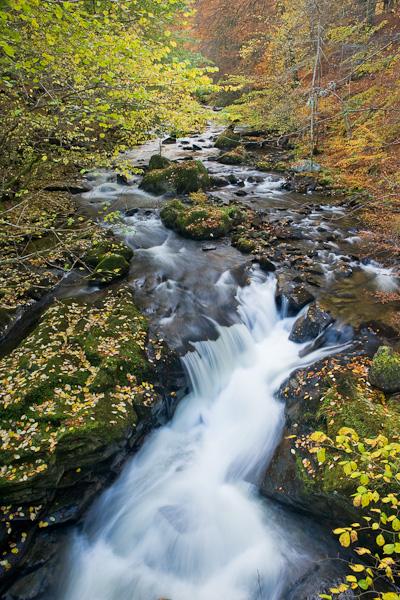 image, autumn, leaves, waterfall, warm, cool, tones, leaves, aberfeldy, perthshire, scotland, photo