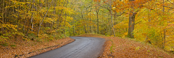 autumn, road, stitched, panoramic. overcast, exposure, times, wind, beautiful, fall colors, winding, scotland, perthshir, photo